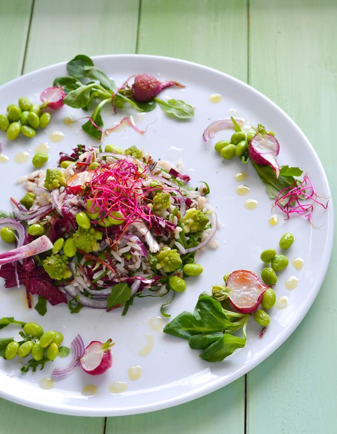 Frühlingshafter Reissalat