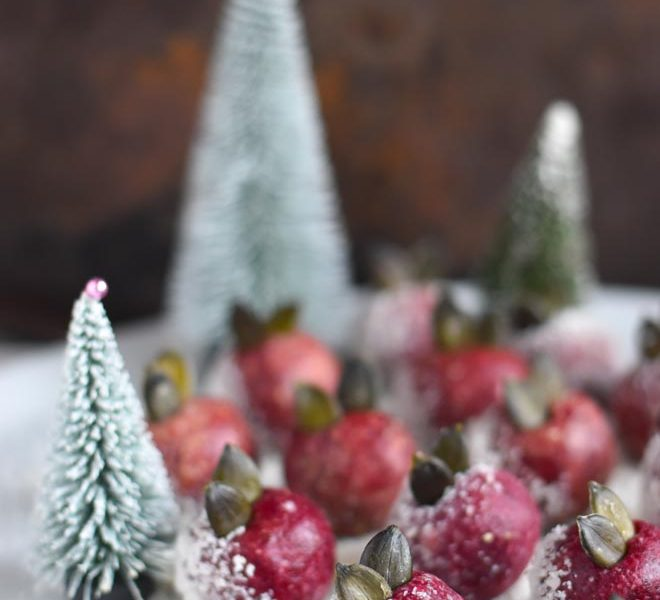 Cranberry Trüffel -  Cranberry Raw Balls in der Festive X-Mas Version