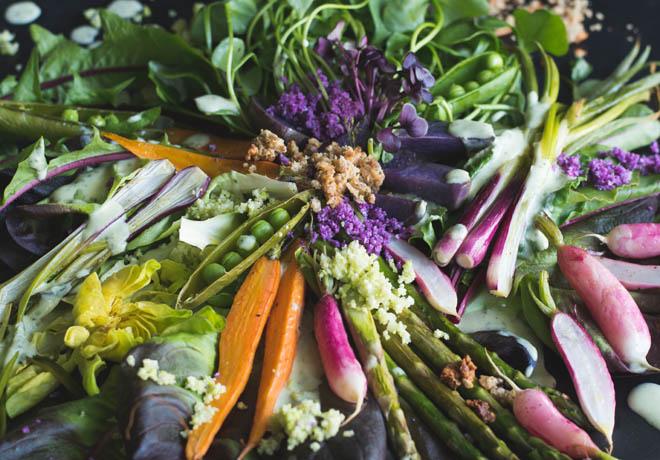 Frühlingsernte Salat mit und ohne Thermomix