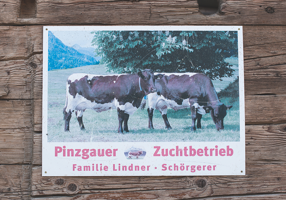 Tirol Milch Sennermeetsblogger