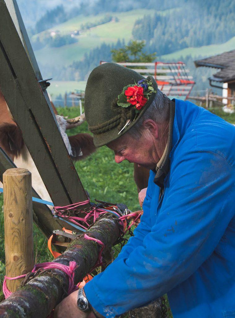 Almabtrieb in Tirol - ein Abenteuer für Senner meets Blogger - Geschichten um guten bergkäse aus Tirol, schmücken und Abtrieb von tiroler Fleckvieh in Söll #almabtrieb #tirol #sennermeetsblogger #bergkäse