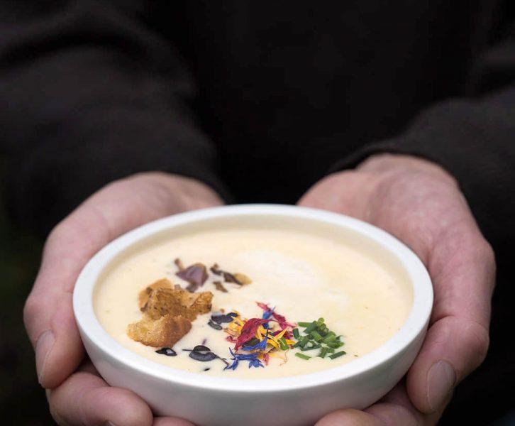 Leichte Bergkäse Suppe