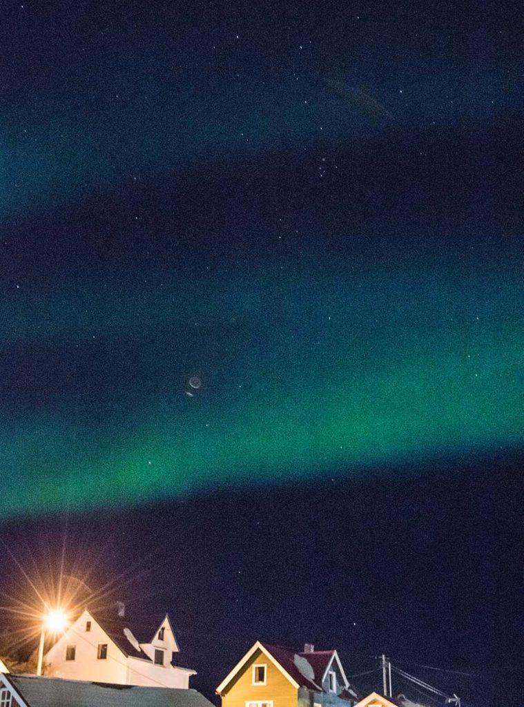 Skrei mit Bärlauch und Senfrahm. Mein Skrei Abenteuer mit Nordlicht im unsagbar schönen Norden von Norwegen