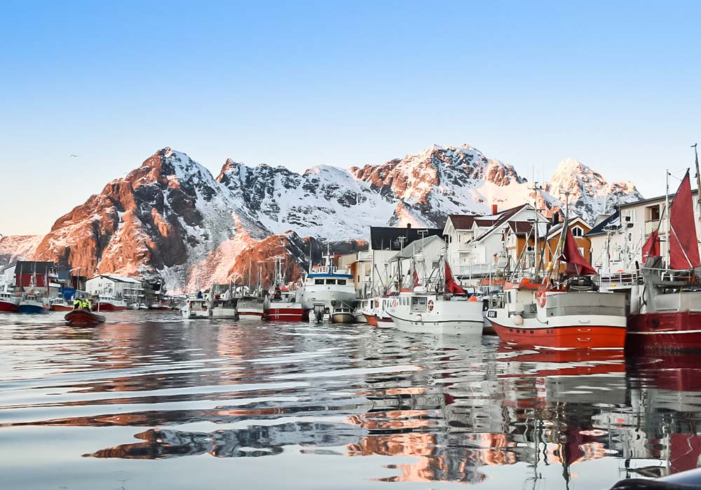 Skrei mit en Fischern in Lofoten angeln