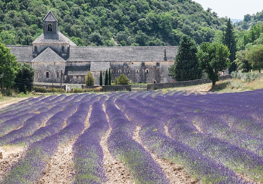 Abtei-Notre-Dame-de-Sénanque