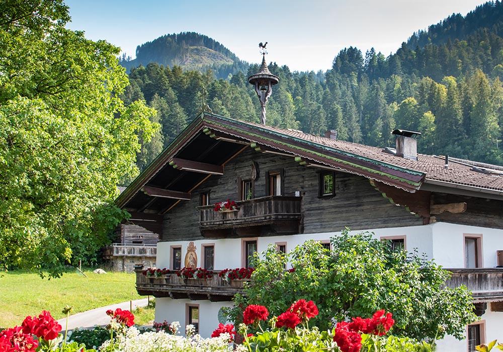Ein sommerliches Heumilch-Abenteuer Bio Bauernhof Knolln