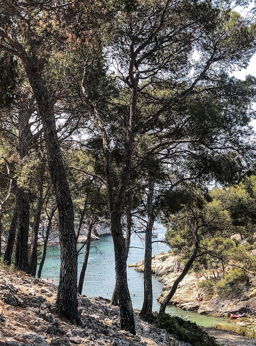 Sommer an der Côte d'Azur Calanque Port-Pin